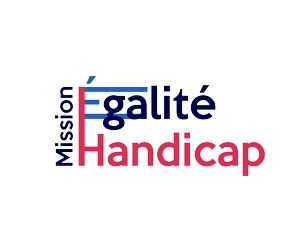 Enquete-Mission-Egalite-Handicap image article