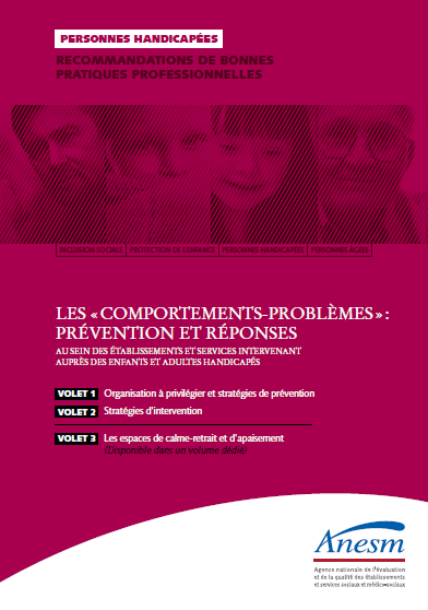 RBPP comportements problemes ANESM